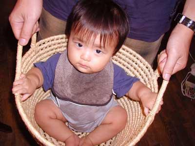 kai_in_the_basket